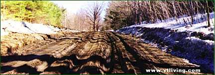 VT Mud Season