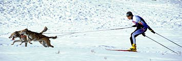 skijornow_johnsandberg
