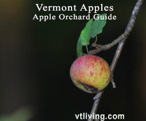 Vermont Apple Orchards