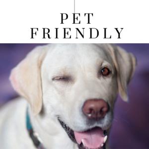 Vermont Pet Friendly Lodging